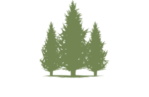 church-lake-logo-white-green