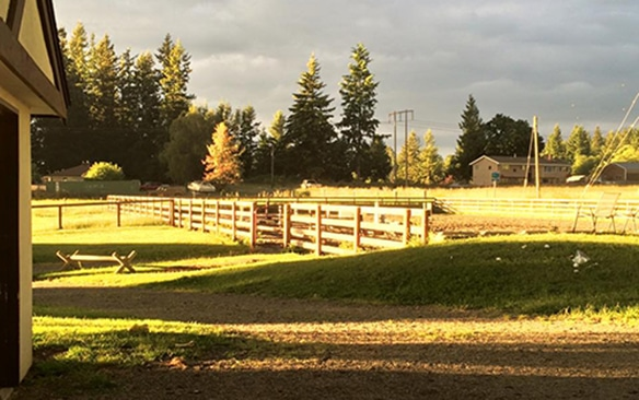 chateau-rodeo-farm-horse-stables