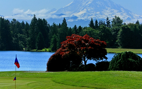 tapps-island-golf-course