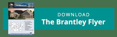 download-brantley-flyer-button