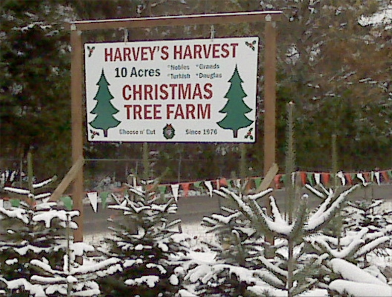 harveys-harvest