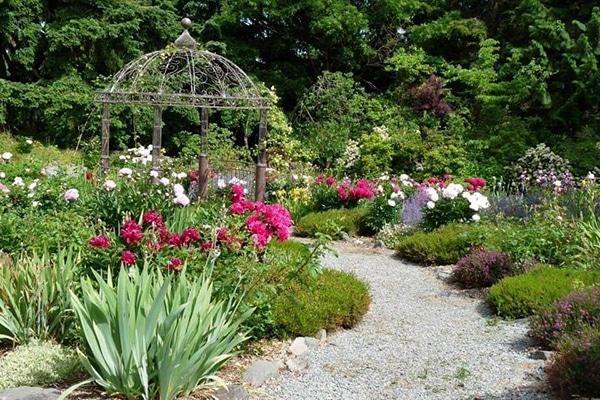soos-creek-botanical-garden