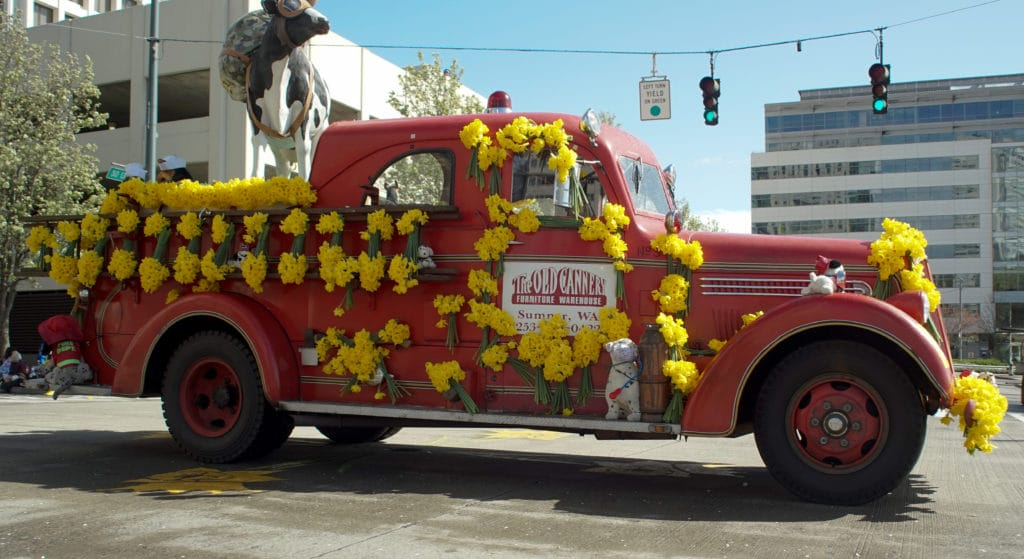 new-homes-orting-dafodil-festival
